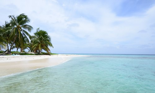 Belize Palmenstrand