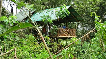 Aussenansicht der Huetten der La Tigra Rainforestlodge in Costa Rica
